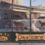 Window Dressing - Acrylic Painting